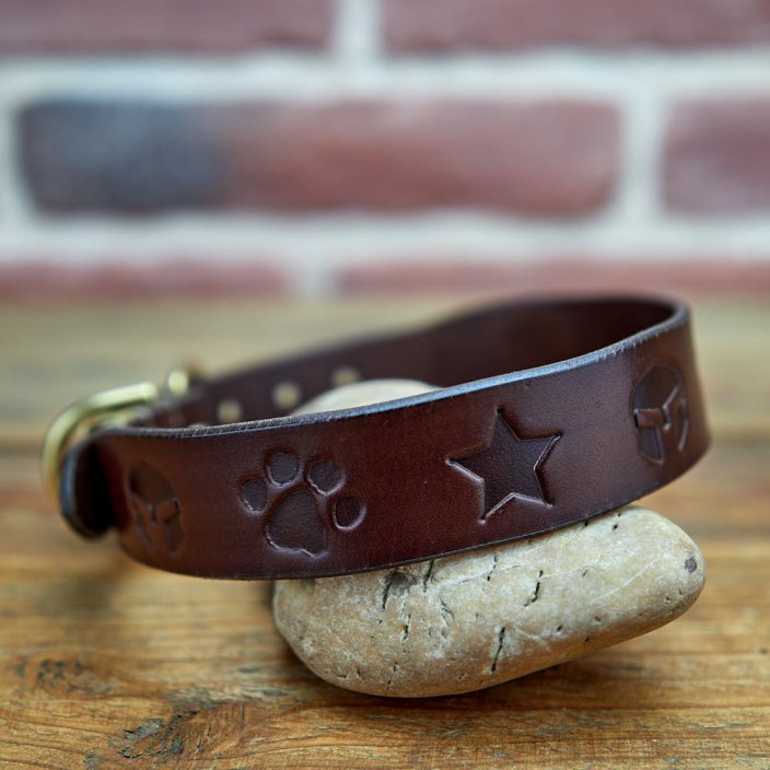 Classic Custom Coinage Collar
