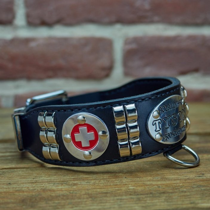 Bandit Dog Collar