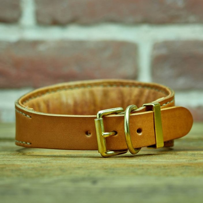 Collier levrier Firefly